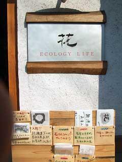 eco-hana-1.jpg